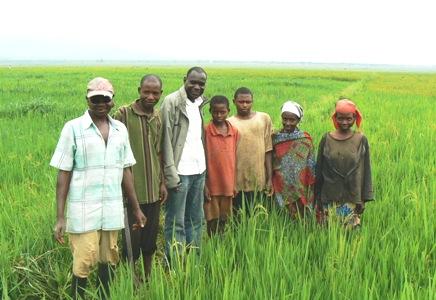 Rice Team Members