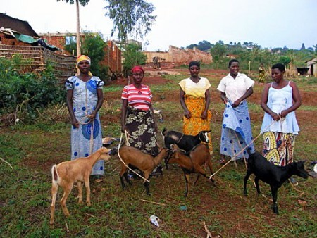 Women and their Goats