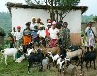 Some Beneficiaries and Some Goats