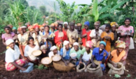 Beneficiaries - Ready to Plant Beans