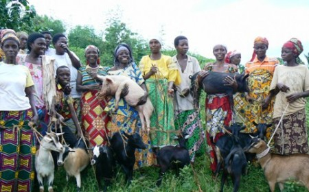 Goats and Pigs - From One Association to Another