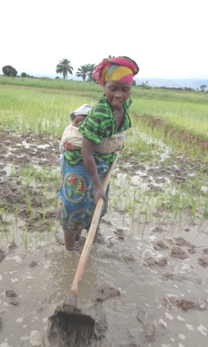 Woman with Baby Preparing to Plant